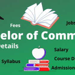 Bachelor of Commerce Course Details