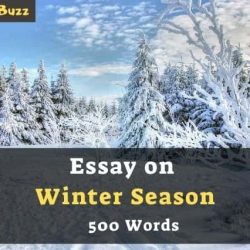 Essay on Winter Season in 200, 300, 400, 500, 600 Words for Class 1-12