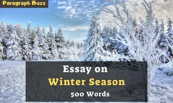 Essay on Winter Season in 200, 300, 400, 500, 600 Words for Class 1-12