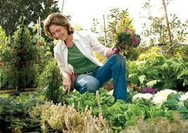 Essay on My Hobby Gardening