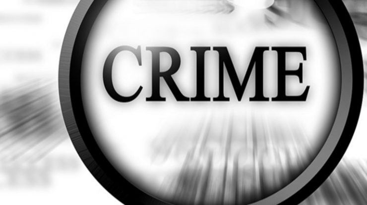 how-to guide on writing expository essays about crime