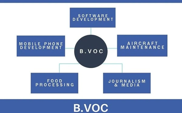 Bachelor of Vocation course